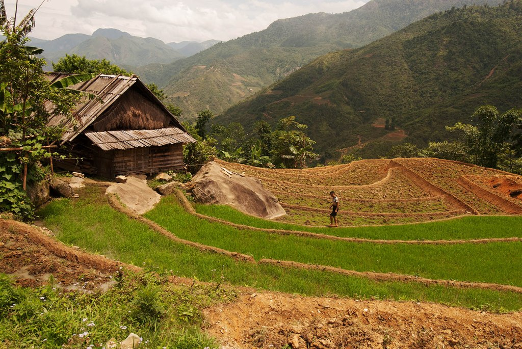 The incredible rice paddies and mountains outside Sapa, Vietnam