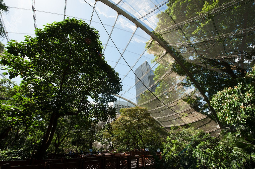 Walk-in aviary with massive stainless steel mesh enclosure at Hong Kong Park