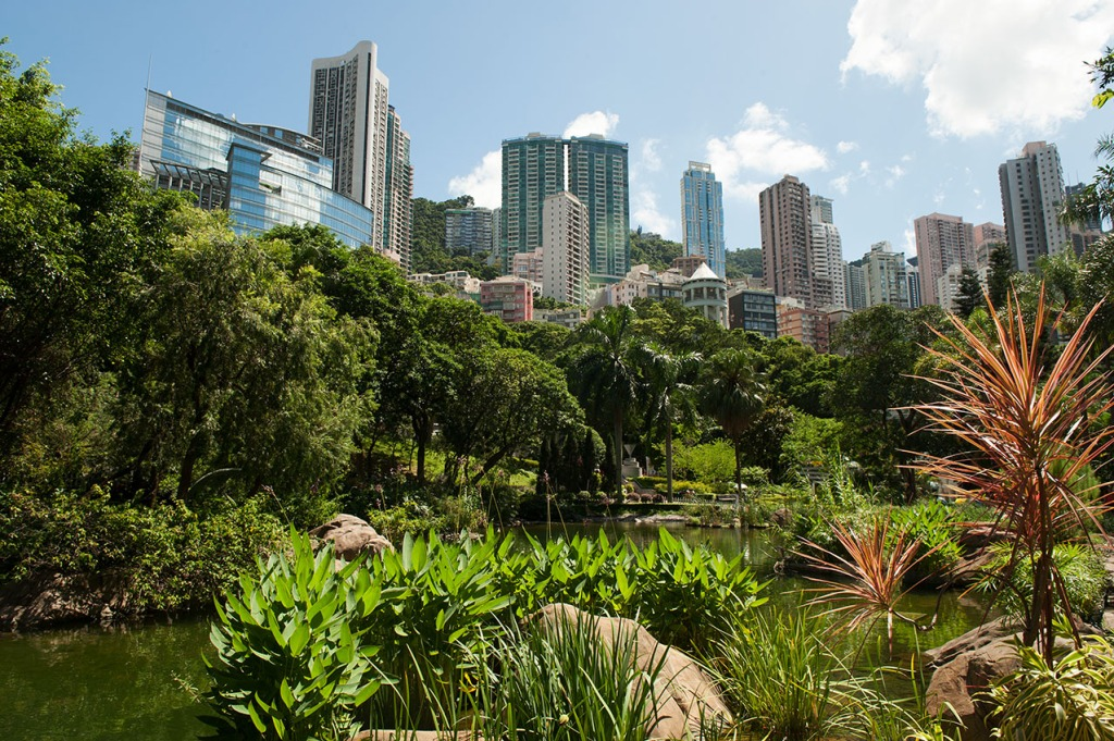 Lush greenery moves skyscrapers to the periphery of Hong Kong Park