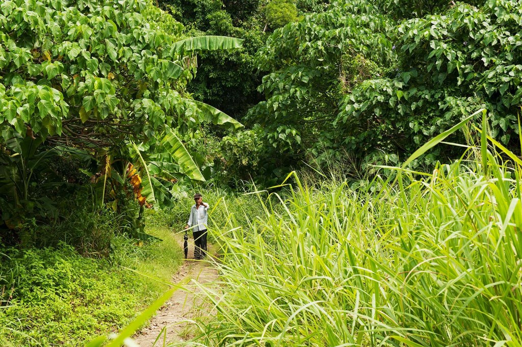 Lamma offers lush greenery and friendly locals while you hike the island