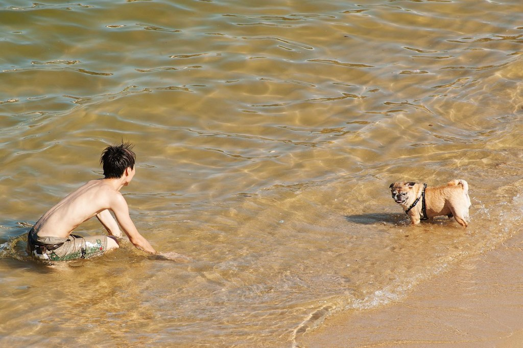 A boy and his dog...on Stanley Main Beach
