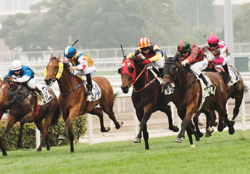 Vying for the CNY Cup at the Sha Tin Racecourse
