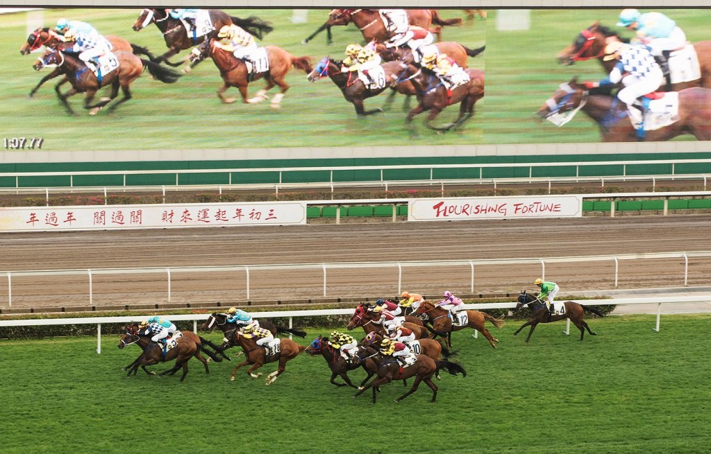 One of the heart-pumping CNY races at the Sha Tin Racecourse