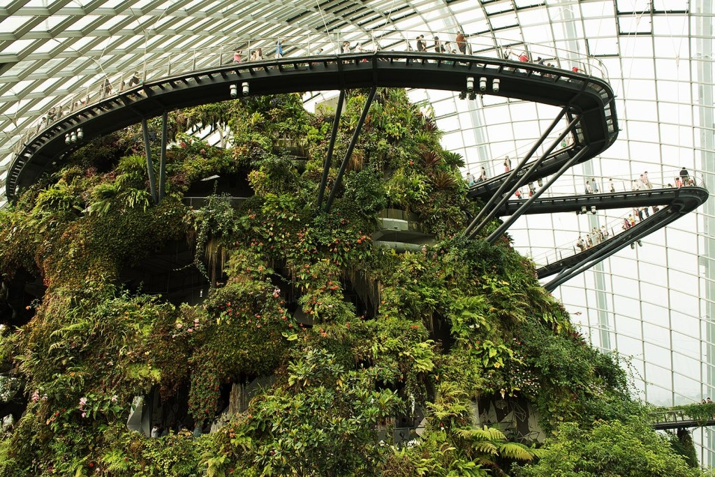 If you're afraid of heights, stick to the middle of the elevated walkways as you hover over the Cloud Forest