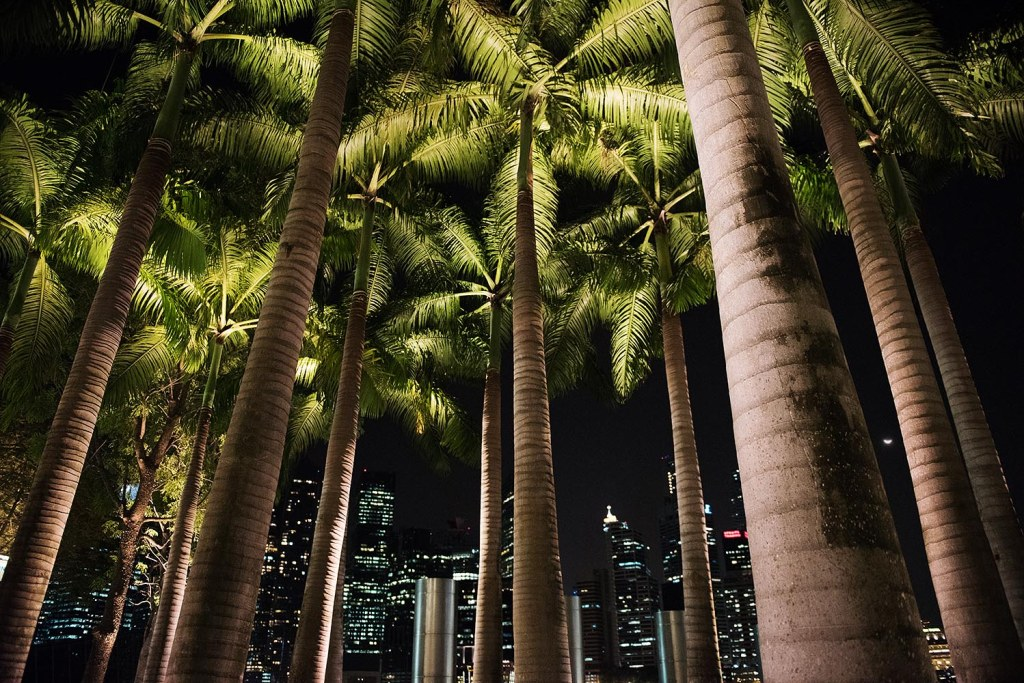 Tropical city skyline - the waterfront promenade at Marina Bay