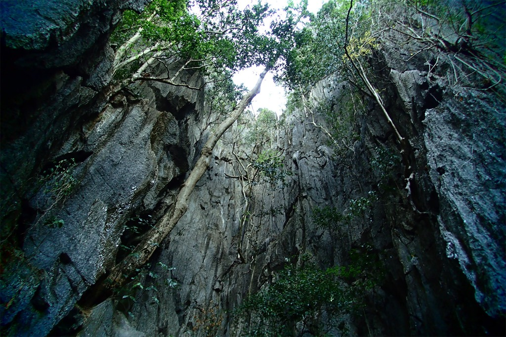 Gazing skyward up the sheer limestone cliffs of the Small Lagoon