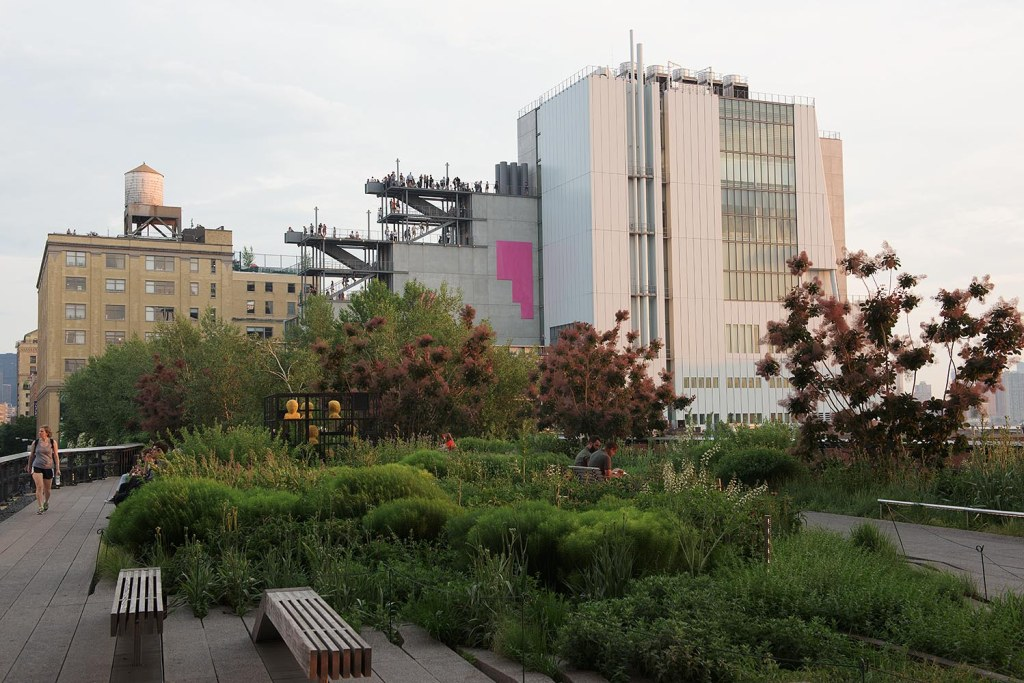 Walkways and greenery on the High Line, with the Whitney as a backdrop