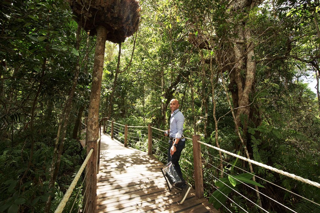 Mark walks one of the paths through Daintree