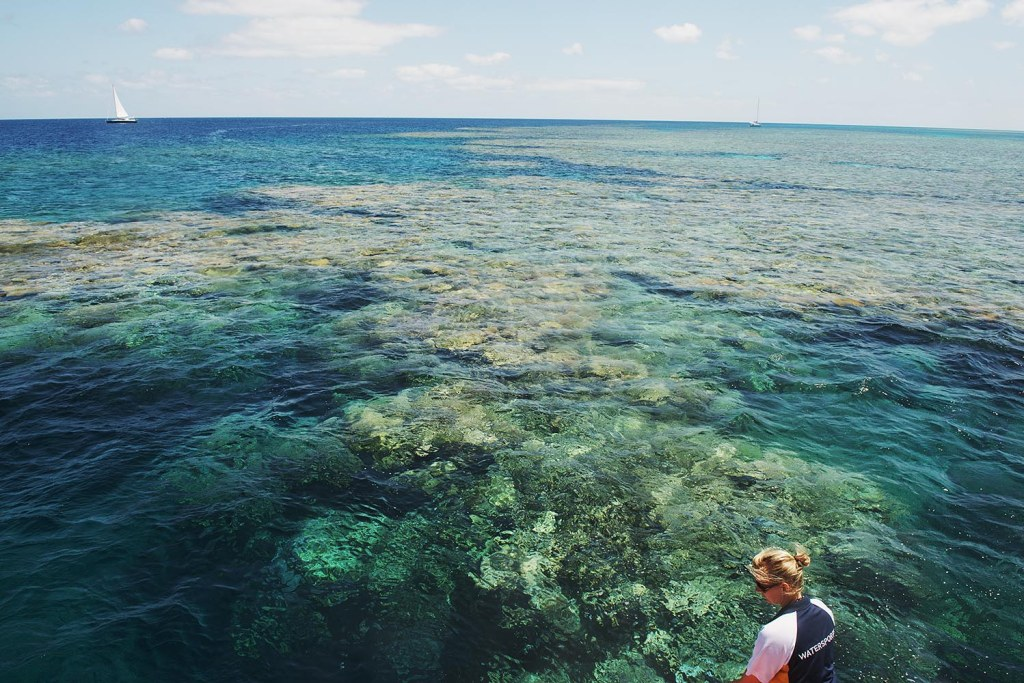 The massive, awe-inspiring Great Barrier Reef!