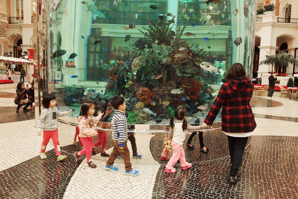 Tiny tots check out the colorful tropical fish inside the columnar aquarium at the MGM Macau